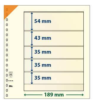 Feuille neutre LINDNER-T : 5 poches-802503 (x10)