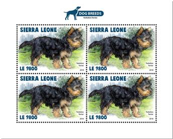 n° 8433 - Timbre SIERRA LEONE Poste