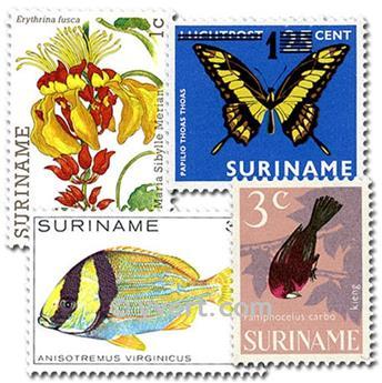 SURINAM : pochette de 50 timbres