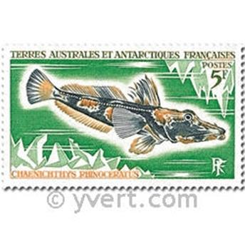 n° 34/38 -  Selo TAAF Correios